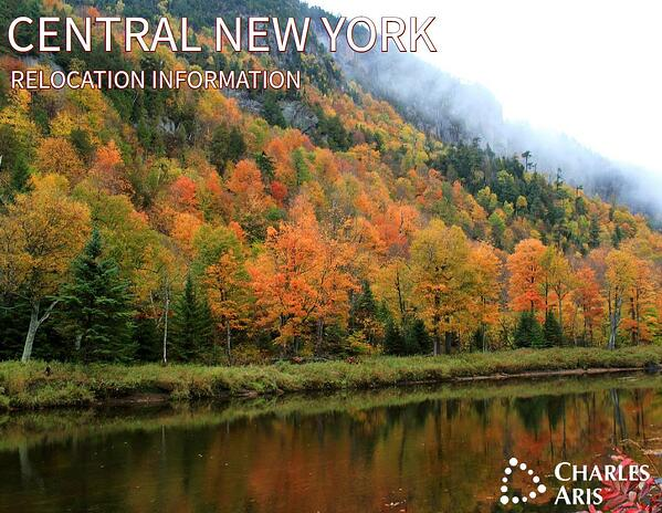Central New York screenshot-3